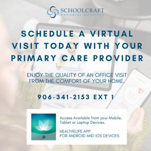 Schedule virtual visit